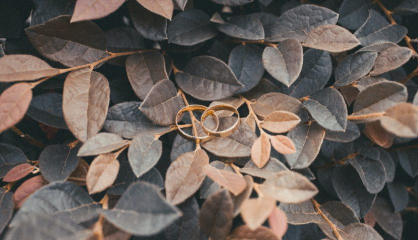 wedding-rings-sitting-on-fall-leaves